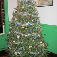 The 2014 Christmas Tree at Gracefield Hall